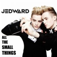 Cover Jedward - All The Small Things
