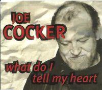Cover Joe Cocker - What Do I Tell My Heart?