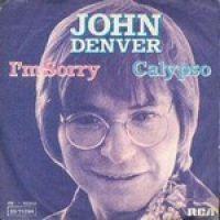 Cover John Denver - I'm Sorry