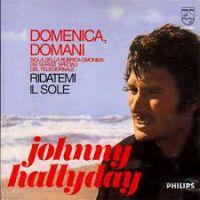 Cover Johnny Hallyday - Domenica, domani