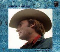 Cover Johnny Hallyday - La terre promise