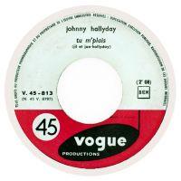 Cover Johnny Hallyday - Tu m'plais