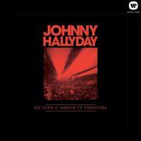 Cover Johnny Hallyday - Un jour l'amour te trouvera