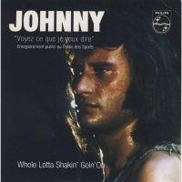 Cover Johnny Hallyday - Voyez ce que je veux dire