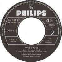 Cover Johnny Hallyday - Wilde Boys