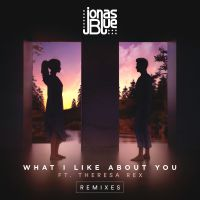 Cover Jonas Blue feat. Theresa Rex - What I Like About You