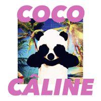 Cover Julien Doré - Coco câline