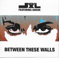 Cover Junkie XL feat. Anouk - Between These Walls