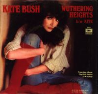 Cover Kate Bush - Wuthering Heights