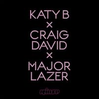 Cover Katy B x Craig David x Major Lazer - Who Am I