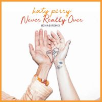 Cover Katy Perry - Never Really Over