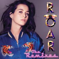 Cover Katy Perry - Roar