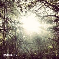 Cover Kodaline - All I Want