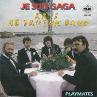 Cover Kris De Bruyne Band - Je suis gaga