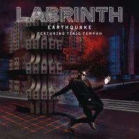 Cover Labrinth feat. Tinie Tempah - Earthquake