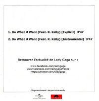 Cover Lady Gaga feat. R. Kelly - Do What U Want