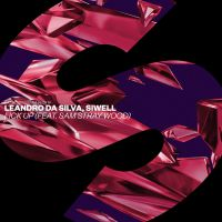 Cover Leandro Da Silva, Siwell feat. Sam Stray Wood - Lick Up
