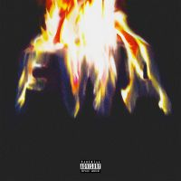 Cover Lil Wayne - FWA
