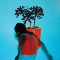 Cover Local Natives - Sunlit Youth
