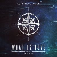 Cover Lost Frequencies - What Is Love 2016