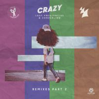 Cover Lost Frequencies & Zonderling - Crazy