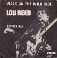 Cover Lou Reed - Walk On The Wild Side
