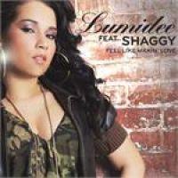 Cover Lumidee feat. Shaggy - Feel Like Making Love