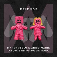 Cover Marshmello & Anne-Marie - Friends