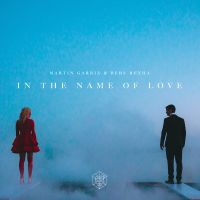 Cover Martin Garrix & Bebe Rexha - In The Name Of Love