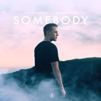Cover Martin Jensen x Bjørnskov - Somebody I'm Not
