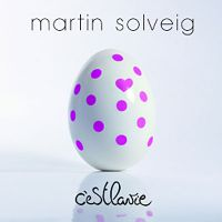Cover Martin Solveig - C'est la vie