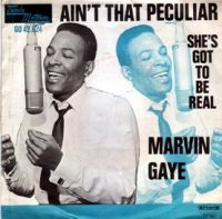 Cover Marvin Gaye - Ain't That Peculiar