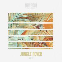 Cover MATTN - Jungle Fever