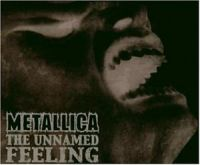 Cover Metallica - The Unnamed Feeling