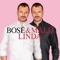 Cover Miguel Bosé feat. Malú - Linda
