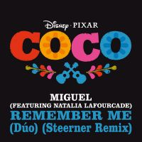 Cover Miguel feat. Natalia Lafourcade - Remember Me