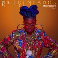 Cover Missy Elliott feat. Sum1 - DripDemeanor