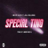 Cover Mista Silva feat. Jaij Hollands - Special Ting