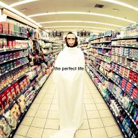 Cover Moby with Wayne Coyne - The Perfect Life