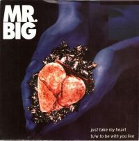 Cover Mr. Big - Just Take My Heart