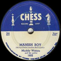 Cover Muddy Waters - Mannish Boy