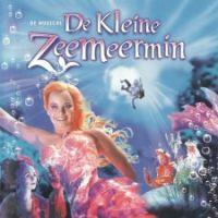 Cover Musical - De Kleine Zeemeermin