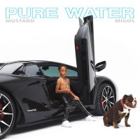 Cover Mustard / Migos - Pure Water