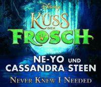Cover Ne-Yo und Cassandra Steen - Never Knew I Needed