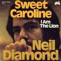 Cover Neil Diamond - Sweet Caroline
