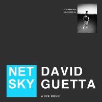 Cover Netsky & David Guetta - Ice Cold
