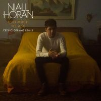 Cover Niall Horan - Too Much To Ask