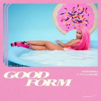 Cover Nicki Minaj feat. Lil Wayne - Good Form