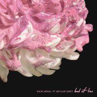 Cover Nicki Minaj feat. Skylar Grey - Bed Of Lies