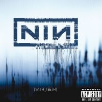 Cover Nine Inch Nails - With Teeth